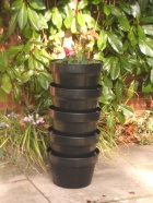 View categories and products within Herb Garden Wormery
