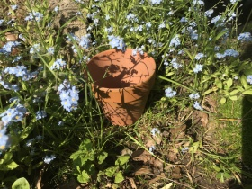 Image of 1930s terracotta pots