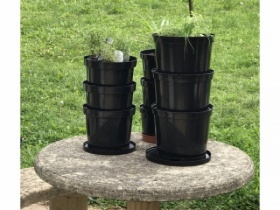 Mini Herb Garden Wormery 2 composters